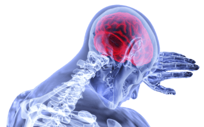 THE TREATMENT AGAINST HIV IS NOT EFFECTIVE IN THE BRAIN OR IN THE SPINAL CORD